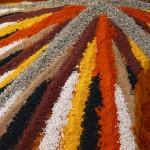 épices colorés