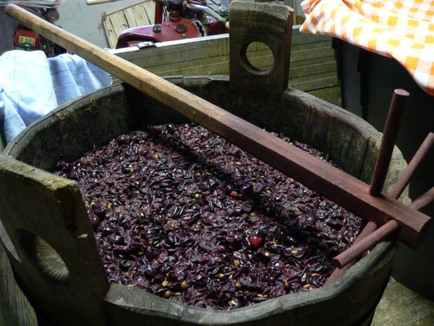 produit-fabrication-raisin