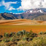 À la découverte des événements festifs de la Bolivie