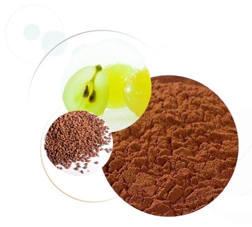 extrait-de-pepin-de-raisin