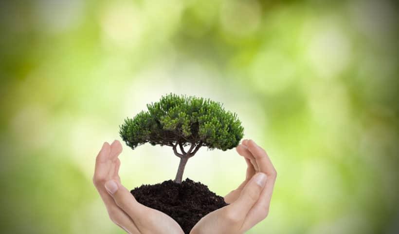 Environnement : les initiatives de La Redoute